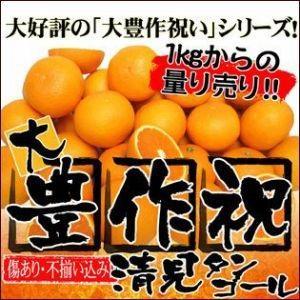 家計救済みんなの200円きよみ(清見) 訳あり・不選別・ご家庭用|fruit-sunny