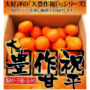 愛媛産訳あり甘平1.5kg×1箱 送料無料 買えば買うほどお得に 2箱で +1.5kg(4.5 kgセット) 3箱で +3kg(7.5kgセット) フルーツ 果物 くだもの みかん 甘平みかん|fruit-sunny