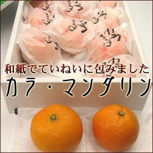 カラ・マンダリン【化粧箱】【送料無料】和紙に包んだプレミアムの逸品♪|fruit-sunny