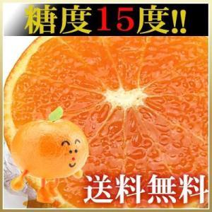 訳あり天草タンゴール5kg送料無料 fruit-sunny