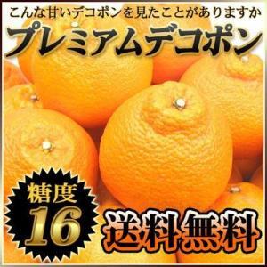 愛媛産 プレミアムデコポン2kg 【送料無料】 fruit-sunny