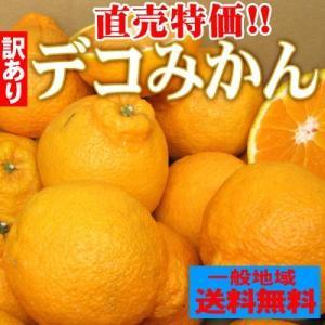 愛媛県産 訳ありデコみかん2kg【送料無料】 デコポンと同品種 でこぽん fruit-sunny