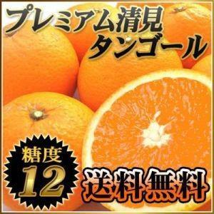 愛媛県産 プレミアム清見タンゴール2kg【送料無料】|fruit-sunny