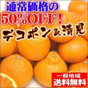 清見タンゴール5kgとデコポン5kgのセット【送料無料】訳あり|fruit-sunny