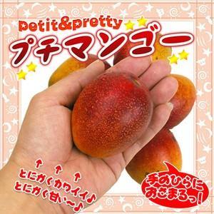 市価の5分の1!手でむける♪甘さ凝縮!チビまろマンゴー1パック|fruit-sunny