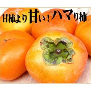 愛媛産 種なし刀根柿 2kg(訳あり・不揃い)【送料無料】|fruit-sunny