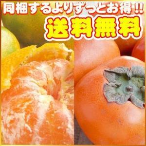 秋の絶品コンビ♪極早生みかん3kgと刀根柿2kgのコンビ 送料無料訳あり・不揃い フルーツ 果物 旬 くだもの わけあり 食品 ワケあり ふぞろい かき 柑橘類 ミカン|fruit-sunny