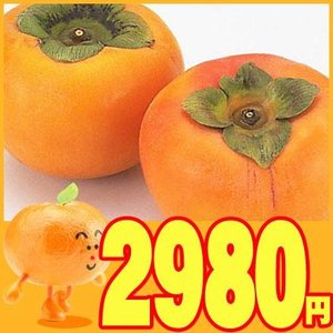 愛媛産 訳あり富有柿4kg 送料無料|fruit-sunny