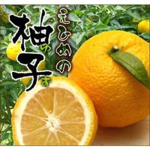 愛媛産ゆず2kg(訳あり)|fruit-sunny