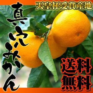 JA西宇和真穴みかんS 5kg 送料無料 愛媛県産 ミカン 蜜柑 fruit-sunny