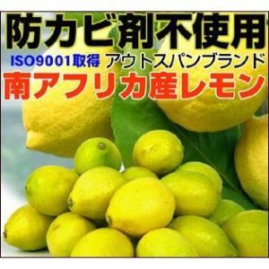 防カビ剤不使用 アウトスパンブランド 輸入レモン 4kg【送料無料】|fruit-sunny