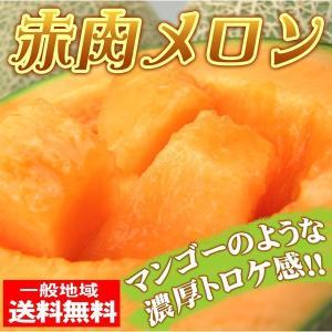 大豊作 赤肉メロン2玉入【送料無料】1箱 秀品 fruit-sunny