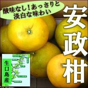 安政柑(あんせいかん)約7kg【送料無料】 訳あり fruit-sunny