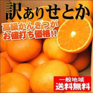 訳ありせとか5kg(訳あり・不揃い)産地直送!送料無料 愛媛県産 フルーツ 果物 くだもの おやつ みかん 柑橘類 ミカン 産地直送|fruit-sunny