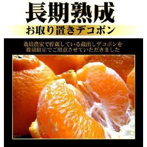 長期熟成デコみかん2kg(訳あり) fruit-sunny
