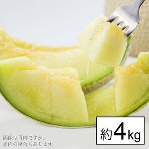 高知、熊本県産 大豊作メロン2〜8玉入【送料無料】約3〜4kg×2箱 訳あり フルーツ 果物 くだもの わけあり 食品 ワケあり ご家庭用 果実 fruit-sunny