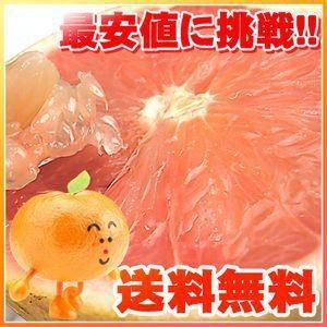 フロリダ産完熟グレープフルーツ 赤・白選べる約8kg【送料無料】 fruit-sunny