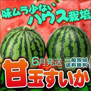 愛媛産 夏だ!ハウス甘玉すいか2玉入り【送料無料】【訳あり不揃い】|fruit-sunny