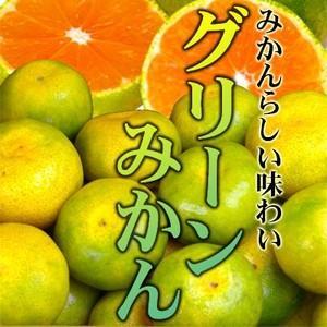 真夏に食べれる温州みかん♪訳ありハウスグリーンみかん1kg【不揃い・傷あり】 フルーツ 果物 旬 くだもの わけあり 食品 ワケあり ふぞろい  柑橘類 ミカン|fruit-sunny