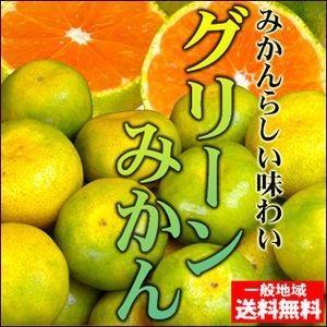真夏に食べれる温州みかん♪訳ありハウスグリーンみかん4kg 送料無料 不揃い・傷あり フルーツ 果物 くだもの 食品 ふぞろい みかん 柑橘類 ミカン|fruit-sunny