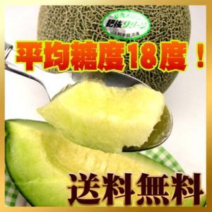 熊本産 あま〜い肥後グリーンメロン 2個入【送料無料】 fruit-sunny