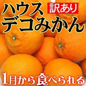 愛媛産 ハウスデコみかん(訳あり)2kg送料無料 fruit-sunny