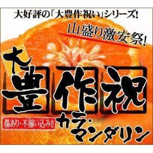 大豊作祝いのカラ・マンダリン5kg【送料無料】訳あり|fruit-sunny