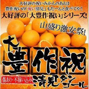 大豊作祝い清見タンゴール 10kg 送料無料 訳あり 2セット御購入でお得な500円OFFクーポン! きよみ 愛媛県産 わけあり フルーツ 果物 くだもの みかん 柑橘類|fruit-sunny