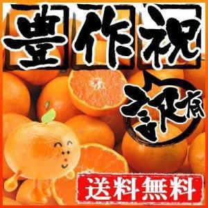 愛媛産 温州みかん20kg 送料無料 訳あり フルーツ 果物 旬 くだもの わけあり ふぞろい 食品 ワケあり ご家庭用 産地直送 みかん 柑橘類 ミカン 産地直送 fruit-sunny