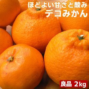 愛媛県産 デコみかん 2kg 良品 送料無料 デコポン 不知火と同品種 でこぽん フルーツ 果物 くだもの みかん 柑橘類 fruit-sunny