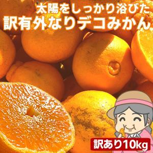 愛媛産 ご家庭用 農家さんもぐもぐ 外なり訳ありデコみかん 10kg(+約0.5kg多め) デコポン でこぽん 不揃い 傷 汚れ有 フルーツ 果物 くだもの みかん 柑橘類 fruit-sunny