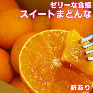 愛媛産 スイートまどんな(訳あり)1kg【2品で+1kg(3kgセット) 3品で+2kg(5kgセット)】紅まどんな 愛果28号と同品種 マドンナ フルーツ 果物 みかん 柑橘類 ミカン fruit-sunny