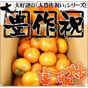 大豊作祝いの富有柿5kg 送料無料 訳あり かき カキ フルーツ 果物 旬 くだもの わけあり 食品 ワケあり ふぞろい 産地直送|fruit-sunny