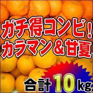 初夏においしいコンビ!ザ・ガチ得!訳ありカラ・マンダリン5kgと訳あり甘夏5kgの10kgセット【送料無料】|fruit-sunny