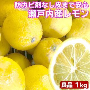 瀬戸内産 国産レモン 1kg 良品 クール便送料無料 檸檬 防腐剤 防かび剤不使用 フルーツ 果物 くだもの 柑橘類|fruit-sunny