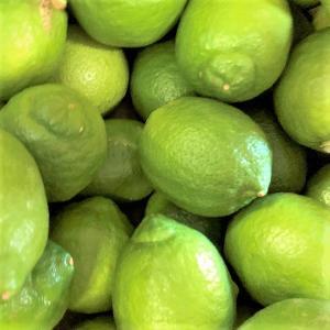 瀬戸内産 国産レモン 1kg 訳あり【2品で+1kg(3kgセット) 3品で+2kg(5kgセット)】クール便送料無料 檸檬 防腐剤 防かび剤不使用 フルーツ 果物 くだもの 柑橘類|fruit-sunny