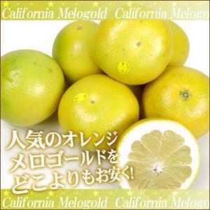 高級柑橘 メロゴールド 5玉【送料無料】 fruit-sunny