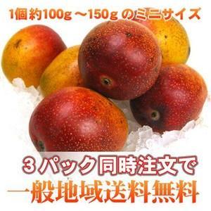 手でむける♪甘さ凝縮!チビまろマンゴー1パック(訳あり・不揃い)|fruit-sunny