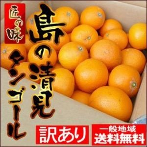 愛媛中島産 島の清見タンゴール 2kg【訳ありご家庭用】【送料無料】|fruit-sunny