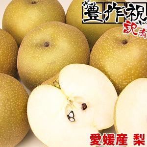 大豊作祝い梨 4kg(不ぞろい・不選別・訳あり)【送料無料】なし 和梨 フルーツ 果物 くだもの わけあり ふぞろい 食品 ワケあり ご家庭用 産地直送|fruit-sunny