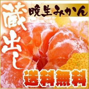 シーズン最終の温州!【訳あり】晩生(おくて)みかん5kg【送料無料】 fruit-sunny