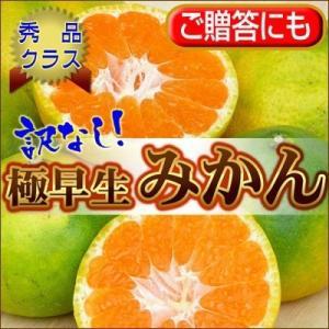 訳なしに挑戦!【訳なし】自信の極早生みかん20kg【送料無料】 フルーツ 果物 旬 くだもの 食品 おやつ 温州みかん 柑橘類 ミカン fruit-sunny