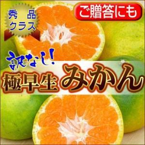 訳なしに挑戦!【訳なし】自信の極早生みかん5kg【送料無料】 フルーツ 果物 旬 くだもの 食品 おやつ みかん 柑橘類 ミカン fruit-sunny