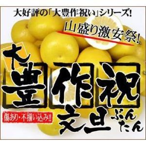 大豊作祝いの文旦4〜5kg【送料無料】|fruit-sunny