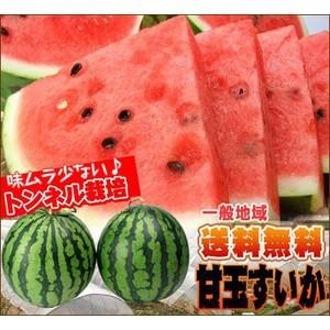 愛媛産 夏だ!甘玉すいか《大玉》2玉入り【送料無料】【訳あり不揃い】|fruit-sunny