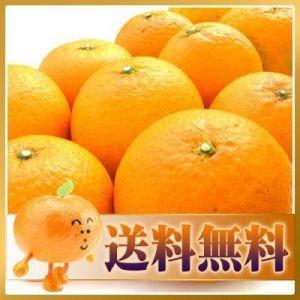 訳あり清見タンゴール2kg【送料無料】クール便対応 フルーツ 果物 くだもの わけあり 食品 ワケあり ご家庭用 みかん 柑橘類 ミカン 産地直送|fruit-sunny