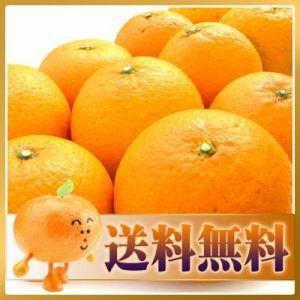 訳あり清見タンゴール5kg【送料無料】|fruit-sunny