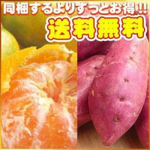 訳あり極早生みかん3kgと鳴門金時2kgのセット【送料無料】 フルーツ 果物 くだもの わけあり 食品 ワケあり ご家庭用 みかん 柑橘類 ミカン|fruit-sunny