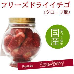 イチゴフリーズドライ グローブ瓶 国産|fruitex