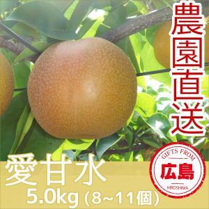 愛甘水 梨 5kg(8~11個) ギフト 広島 |fruitex